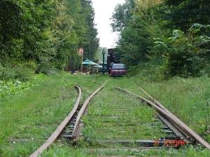 Puszczańska kolejka - stacja Białowieża Towarowa